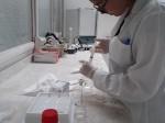 Producción de biodiesel con catalizadores enzimáticos UMAG –Depto. Ing. Química.